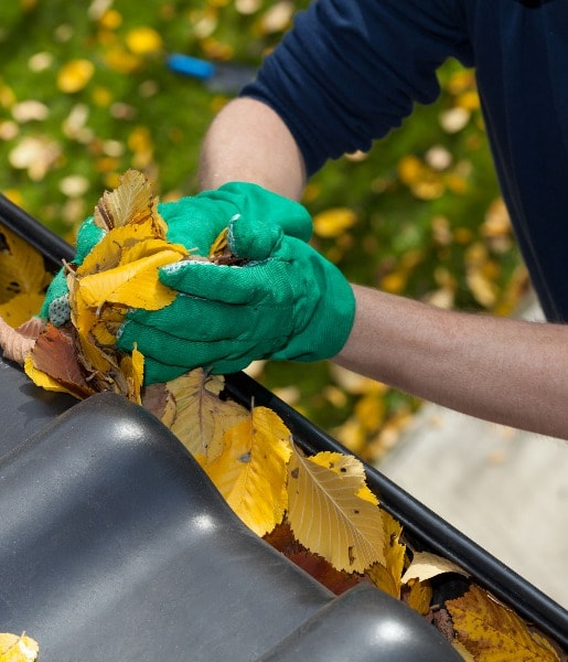 Professional Gutter Cleaning Services in Hillsborough, New Jersey