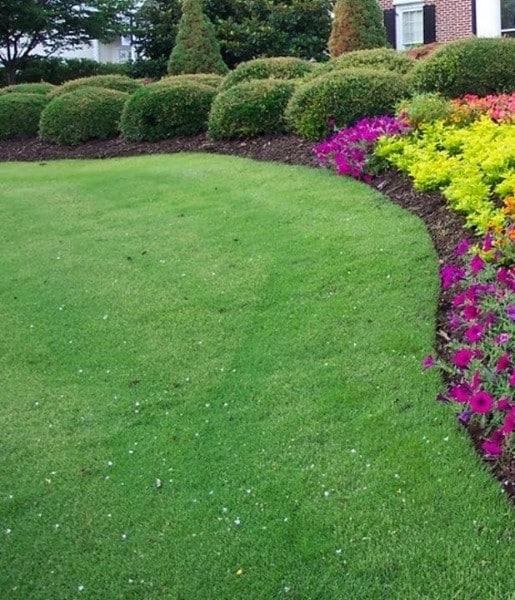 Lawn Maintenance Services in Bridgewater New Jersey