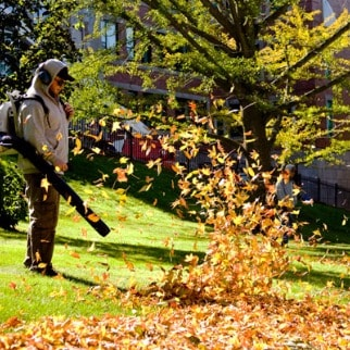 Fall Cleanup Services Somerville, New Jersey
