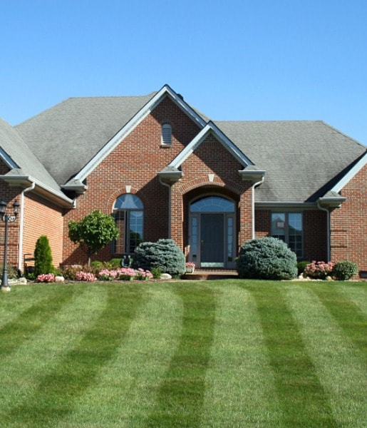 Lawn Restoration Services in Central New Jersey
